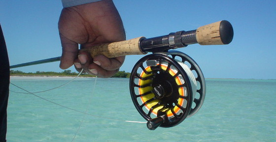 fly fishing charter equipment needs, Fly Fishing Bait